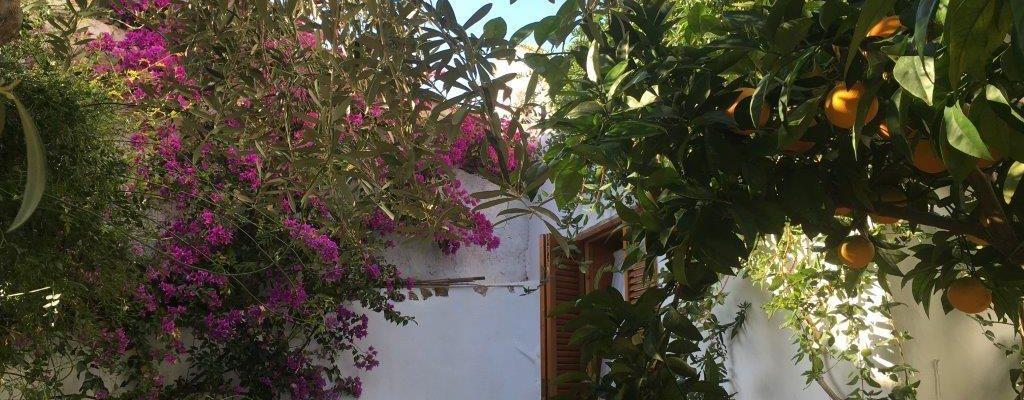 Andalusien Otivar Granada Village House 44083