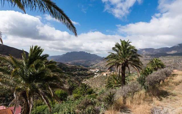 Kanaren Gran Canaria Finca 3382